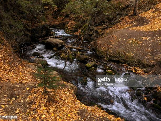 best of month - chugach state park stock pictures, royalty-free photos & images