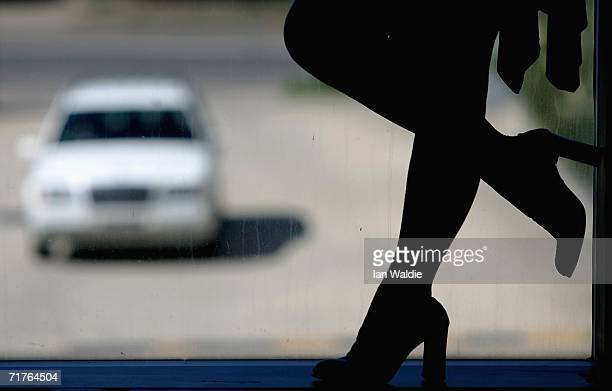 Beth a service provider at Sydney brothel The Site stands in a window as a motorist approaches September 1 2006 in Sydney Australia The brothel is...