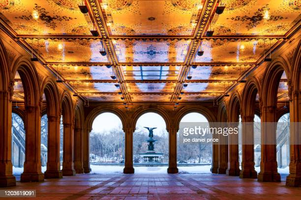 bethesda fountain in central park, new york city, new york, america - central park manhattan stock pictures, royalty-free photos & images
