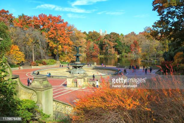 bethesda fountain with many tourists in autumn - rainer grosskopf stock pictures, royalty-free photos & images