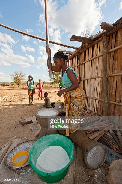 betsileo girl pounding rice madagascar - eastern african tribal culture stock photos and pictures