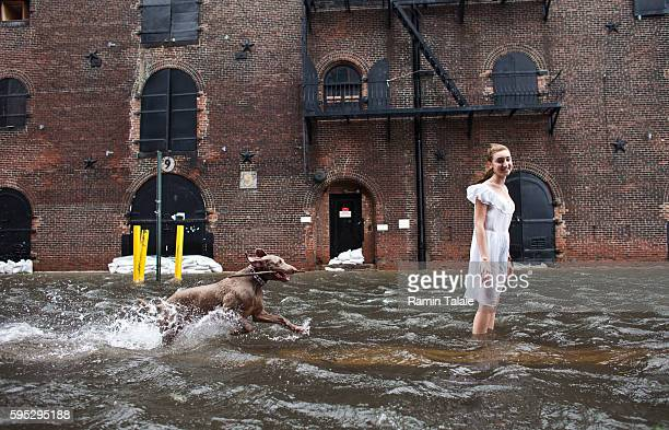 Betty Walsh and her dog Casper play in a flooded street in Red Hook section of Brooklyn after hurricane Irene made landfall in New York City on...