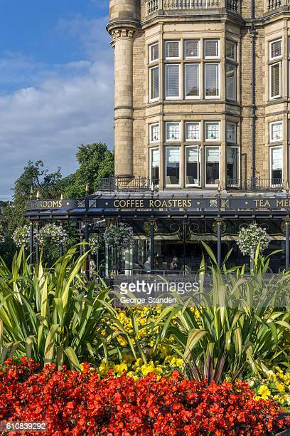 bettys cafe and tea rooms, harrogate - harrogate stock pictures, royalty-free photos & images