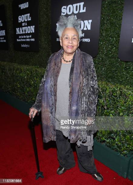 Betye Saar attends The Broad Museum celebration for the opening of Soul Of A Nation Art in the Age of Black Power 19631983 Art Exhibition at The...