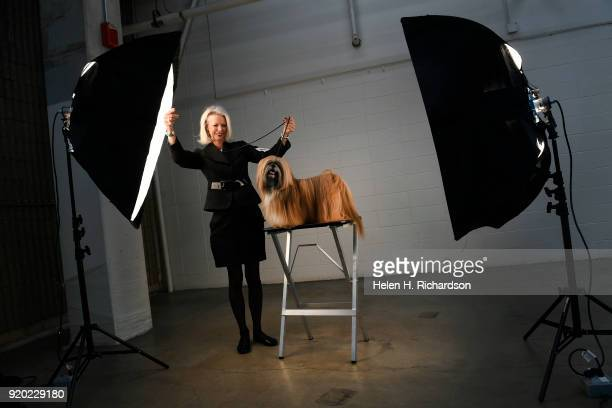Bev Adams tries to get her grand champion Lhasa Apso Johnny Depp to look at the camera for a photograph during the Colorado Kennel Club Dog Show at...