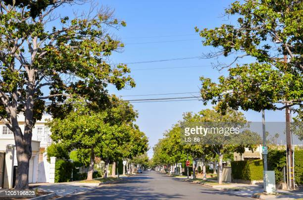 beverly hills - beverly hills stock pictures, royalty-free photos & images