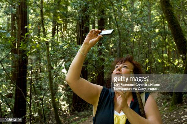 Beverly Taylor of London, England, snaps a picture of the the canopy of trees over Muir Woods in Marin County, Calif., on Thursday, July 8 during her...