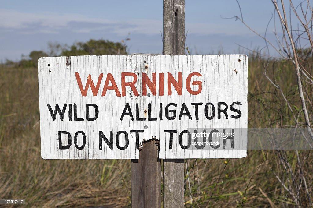 Beware of alligators sign : Stock Photo