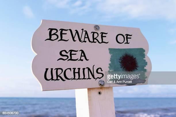 'Beware of Sea Urchins' Sign