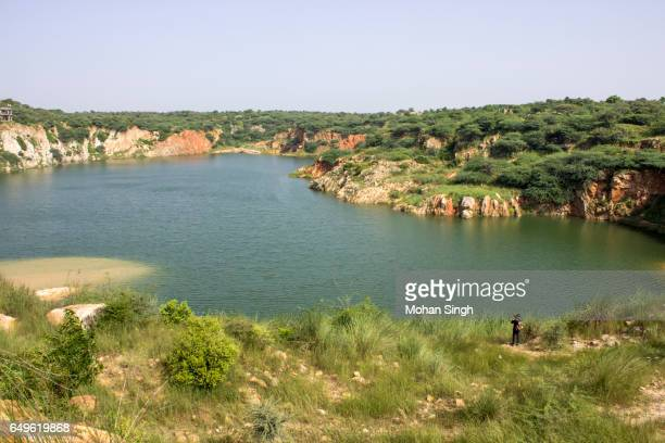 bhardwaj lake, asola wild life sanctuary, asola - faridabad stock pictures, royalty-free photos & images