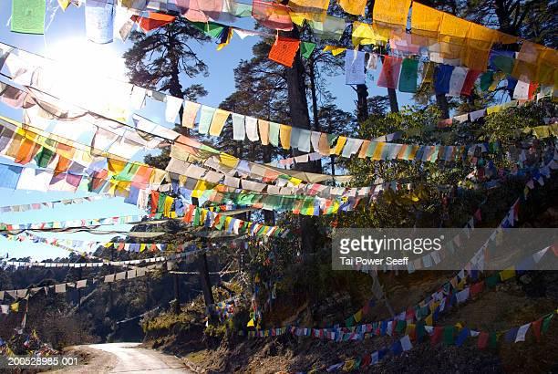 bhutan, prayer flags drape across road at dochula pass - dochula pass stock-fotos und bilder