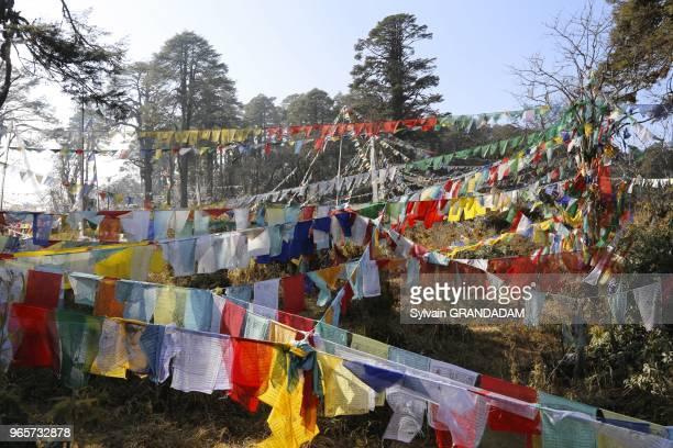 Bhutan the road from Thimphu to Punakha trough Dochula pass prayer flags at the pass // Bhoutan la route de Thimphu a Punakha par le col de Dochula...