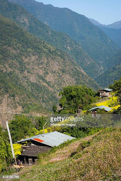 bhutan, trongsa, nimshong. village houses and fields on steep hillside. - trongsa district stockfoto's en -beelden
