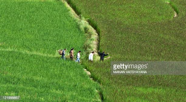 Bhutanese villagers walk through the paddy fields in Paro on August 21 2011 The Kingdom of Bhutan is a small landlocked country in South Asia located...