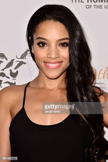 Bianca Lawson attends the Humane Society of the United States 60th Anniversary Benefit Gala at The Beverly Hilton Hotel on March 29 2014 in Beverly...