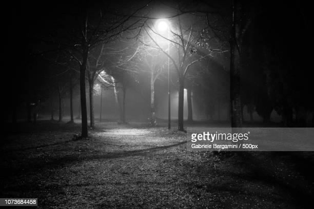 bianco e nero - bianco e nero stock pictures, royalty-free photos & images