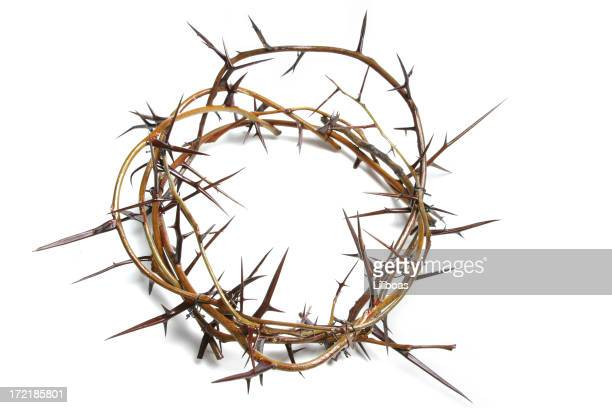 Bible Series Crown of Thorns