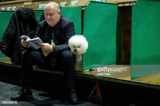 Bichon Frise pokes his head from a bench ahead of judging on day three of the Cruft's dog show at the NEC Arena on March 10 2018 in Birmingham...
