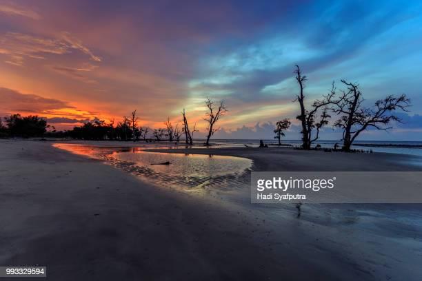 Bi-Color sunset