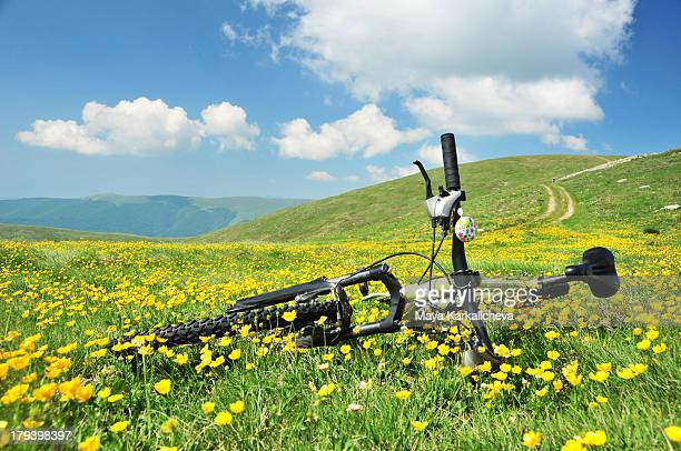 Bicycle at mountain valley with yellow flowers