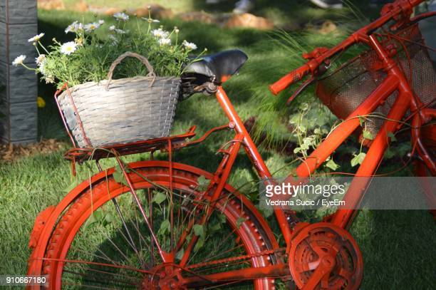 Bicycle By Grass