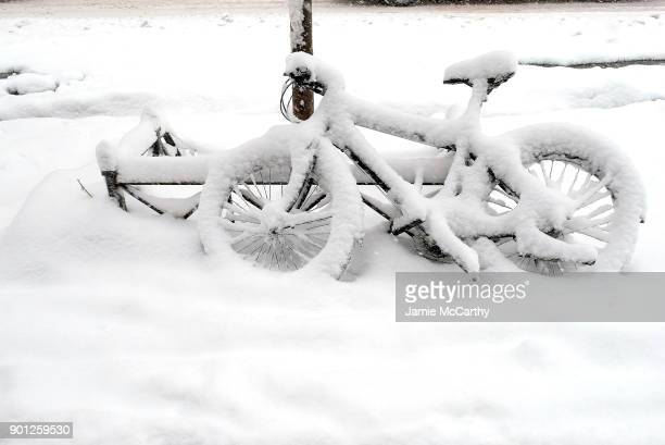 A bicycle chained to a tree is covered in snow during a massive winter storm on January 4 2018 in New York City From Maine to Florida every state...