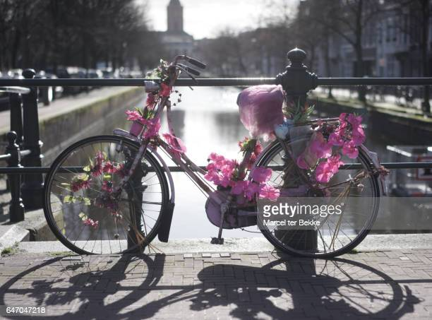 Bicycle decorated with pink flowers