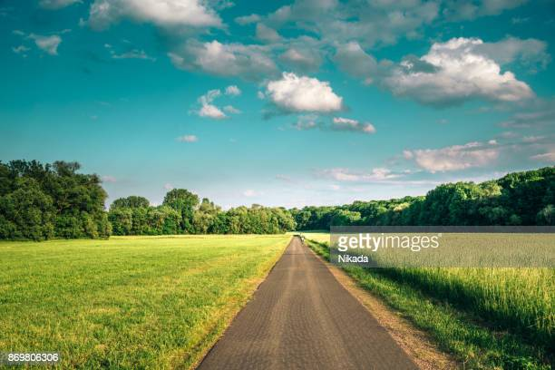 bicycle lane along meadow surrounded by forest - clear sky stock pictures, royalty-free photos & images