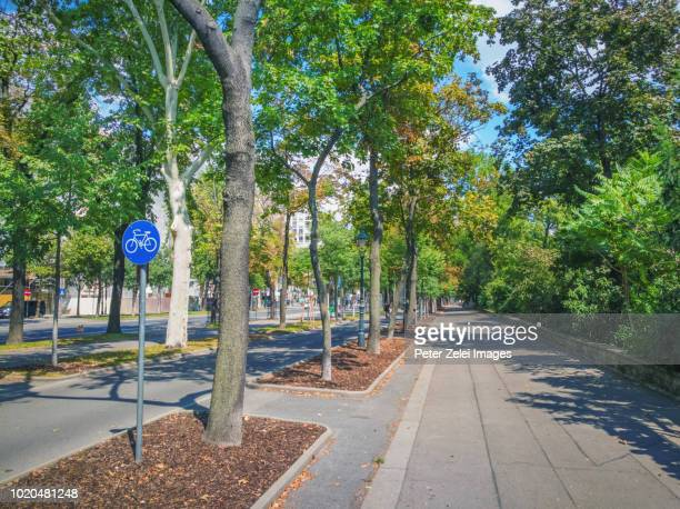 bicycle lane in vienna, austria - boulevard stock pictures, royalty-free photos & images