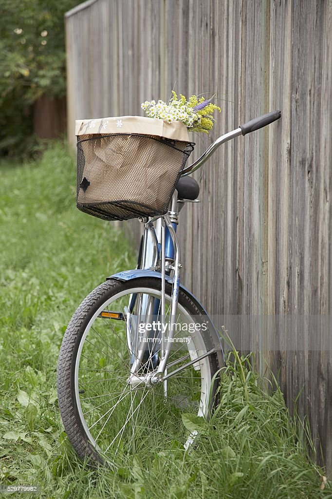 Bicycle leaning against fence : Foto de stock