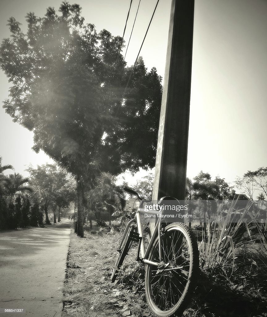 Bicycle Leaning On Pole Parked By Road : Stock Photo