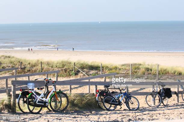 bicycle lifestyle in netherlands - the hague stock pictures, royalty-free photos & images