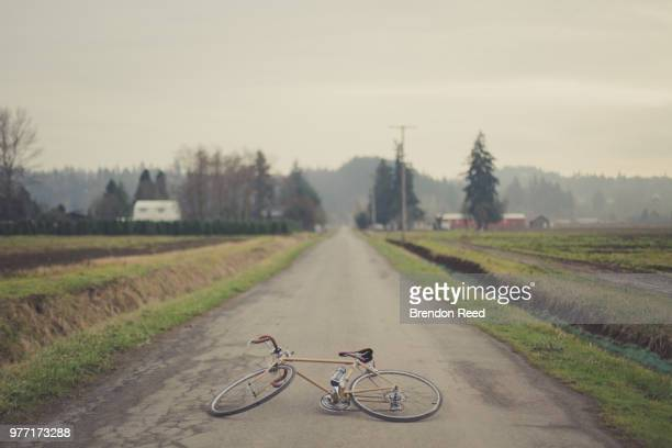 bicycle lying on road - ditch stock photos and pictures