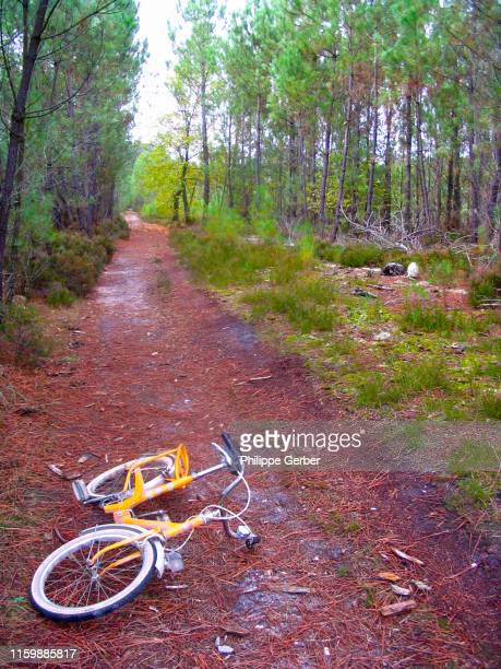 bicycle on a trail in the woods - sarthe stock pictures, royalty-free photos & images
