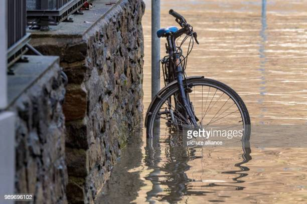 A bicycle on the FritzSchaefferPromenade stands in the highwater from the River Danube in Passau Germany Germany 5 January 2018 Photo Armin Weigel/dpa