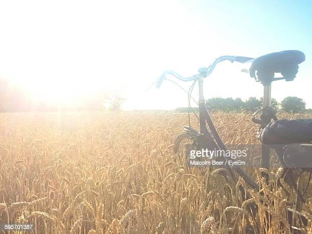 Bicycle On Wheat Field Against Sky