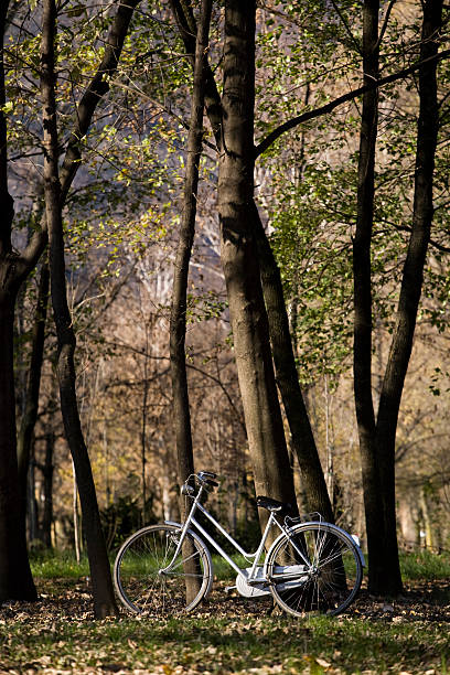 Bicycle Park, autumn, Vertical