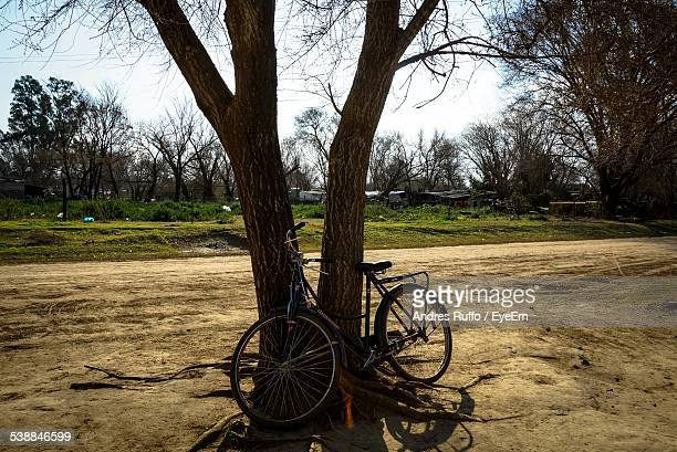 Bicycle Parked By Tree On Field