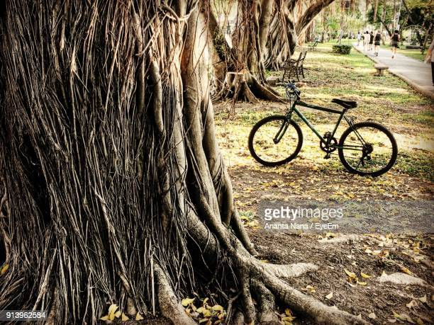 Bicycle Parked On Field By Trees