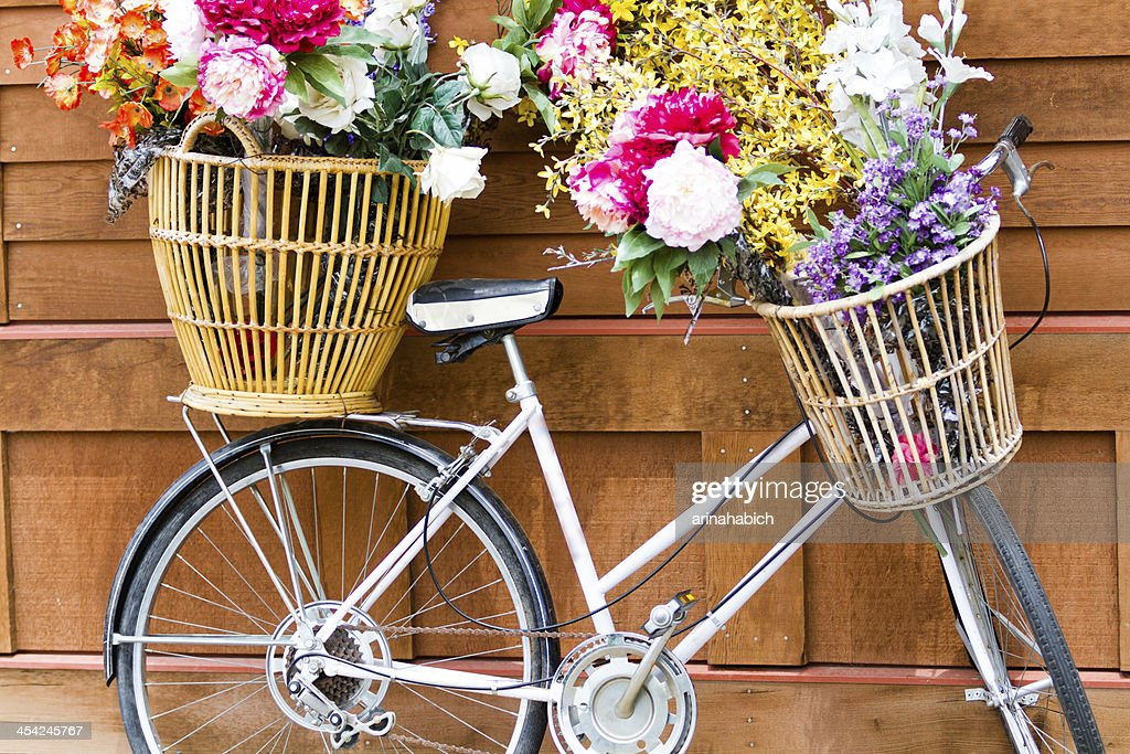 Bicycle : Stock Photo
