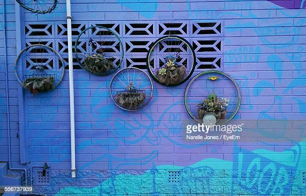 Bicycle Wheels Hanging On Wall