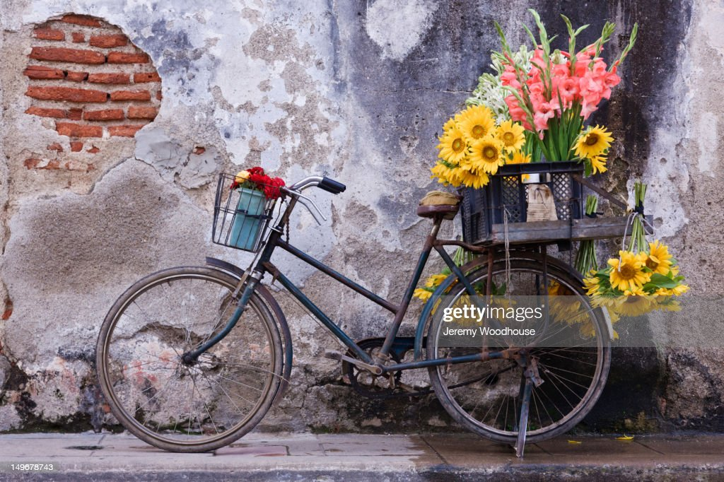 Bicycle with flowers in basket : Stock Photo