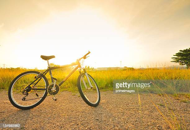 Bicycle with sunlight in the field