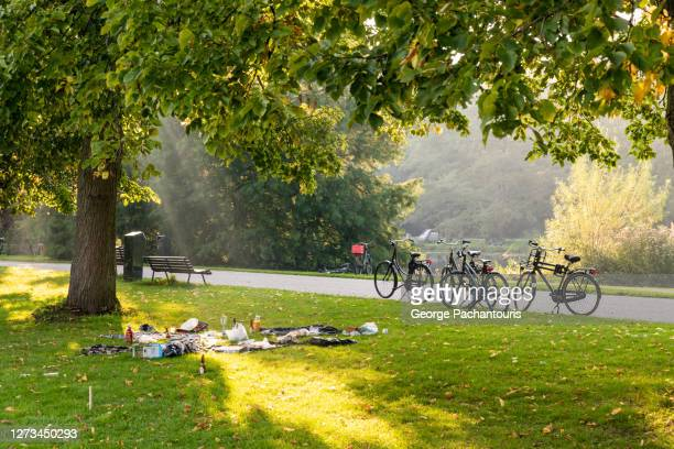 bicycles and picnic in the park - natural parkland stock pictures, royalty-free photos & images