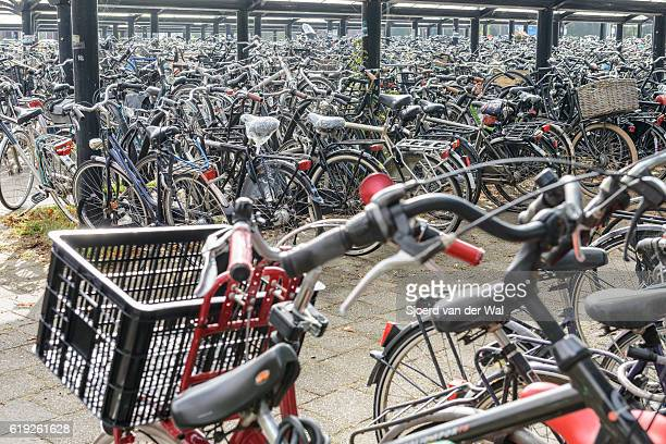 "bicycles in bicycle parking rack at train station in holland - ""sjoerd van der wal"" stockfoto's en -beelden"