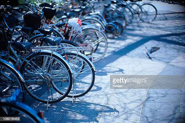 Bicycles in the afternoon