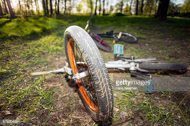 bmx bicycles in the forest - hans neleman ストックフォトと画像