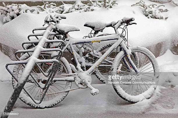 Bicycles parked in a bike rack outside Toronto Union Station during a snowstorm. Toronto, Ontario, Canada, 2009.