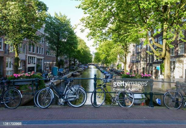 bicycles parked on the fence of a bridge over bloemgracht canal, amsterdam - netherlands stock pictures, royalty-free photos & images