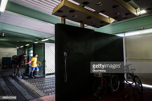 Bicycles stand under a solarium as an employee guides a horse to exit of the equine swimming pool building at the Sha Tin Racecourse, operated by...